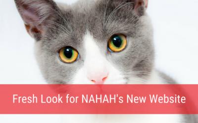 Fresh Look for NAHAH's New Website