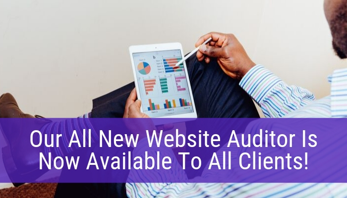 Our All New Website Auditor Is Now Available To All Clients!